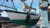 Продажа яхты Tupelo Honey