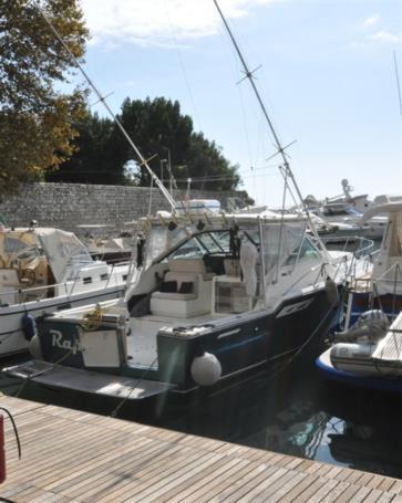 RAPTUS yacht sale