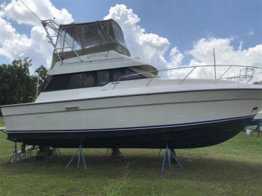 Купить яхту Summer Squeeze в Atlantic Yacht and Ship