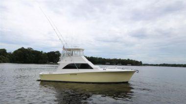"Intimidator - Ocean Yachts 50' 0"""