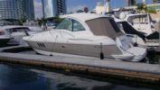 "the best price on Kama - Cruisers Yachts 42' 0"""