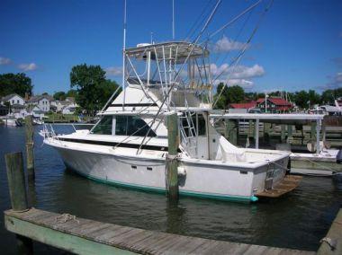 Лучшие предложения покупки яхты Carol J - BERTRAM