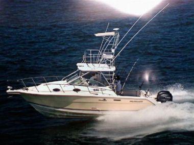 Продажа яхты LADY MYLENE - WELLCRAFT 290