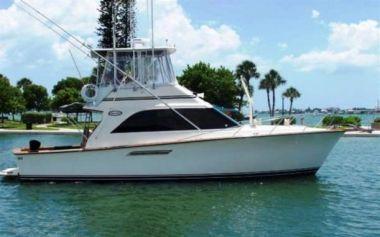 Лучшая цена на Prime Time - Ocean Yachts