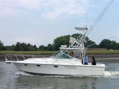 Продажа яхты Sterling ll - TIARA 3100 Open