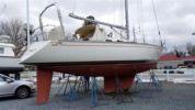 White Wings - TARTAN 40 yacht sale