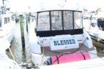 Blessed - CARVER Trojan 440 Express