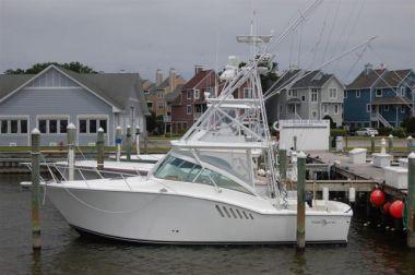 Moonstruck Bay - ALBEMARLE price