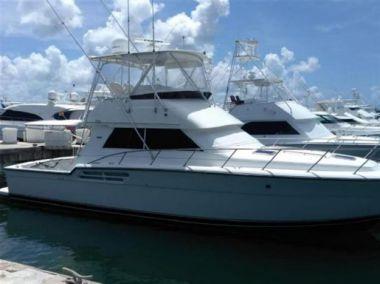 "best yacht sales deals DANIEL - TIARA 43' 0"""