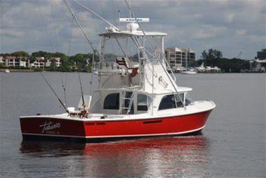 TABASCO - BERTRAM Sportfish