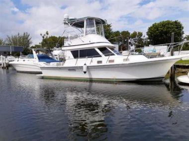 Продажа яхты Silvia ll