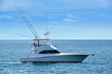 Buy a Dealers Choice - VIKING 46 Convertible at Atlantic Yacht and Ship
