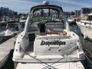 Buy a Downtime - SEA RAY 320 Sundancer at Atlantic Yacht and Ship