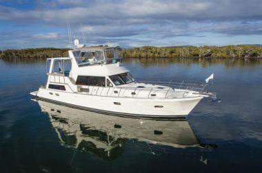 50 Free Ocean Yacht Fish  - NORSEMAN YACHTS