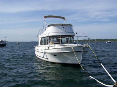 best yacht sales deals Rianna D - CAMANO