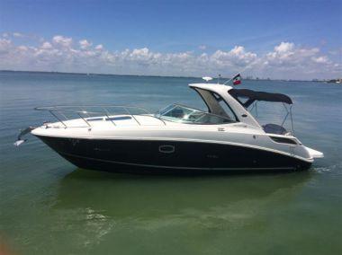 Купить яхту 2013 Sea Ray 310 Sundancer в Atlantic Yacht and Ship