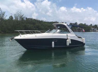 Стоимость яхты 2011 SEA RAY 310 SUNDANCER - SEA RAY 2011