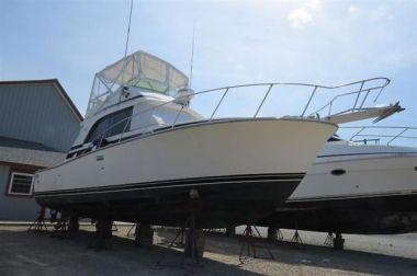 Bay Dreamin - BERTRAM 33 Flybridge Cruiser