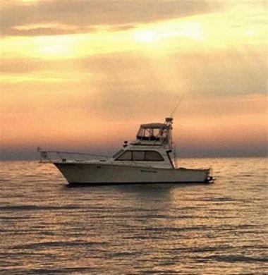 Лучшие предложения покупки яхты Ready to go - EGG HARBOR