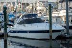 """Nauti Girls - Cruisers Yachts 34' 0"""""""