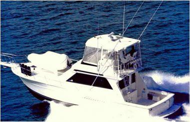 Стоимость яхты No Name - VIKING