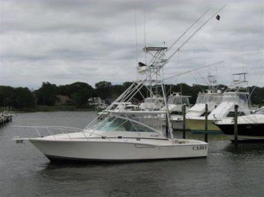 Купить яхту CABO WABO в Atlantic Yacht and Ship