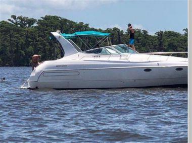 Buy a Stylin' - CRUISERS 3570 at Atlantic Yacht and Ship