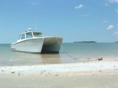 Купить яхту Sea Level - Buzzards Bay Catamaran в Atlantic Yacht and Ship