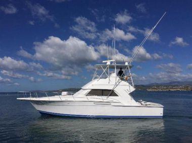 Купить яхту 43ft 1993 Bertram 43 Convertible в Atlantic Yacht and Ship