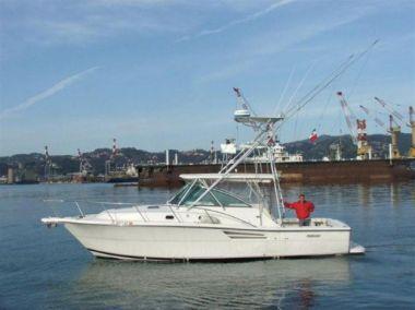 Продажа яхты 34' Pursuit 3400 Offshore 2003