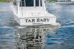 Tar Baby - CABO 47 Convertible