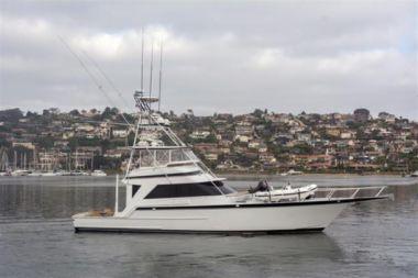 Купить яхту EL GUAPO - STRIKER 1989 в Atlantic Yacht and Ship