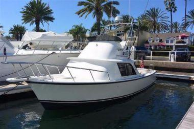 Продажа яхты Sunday Funday aka Wildcat - BERTRAM 31