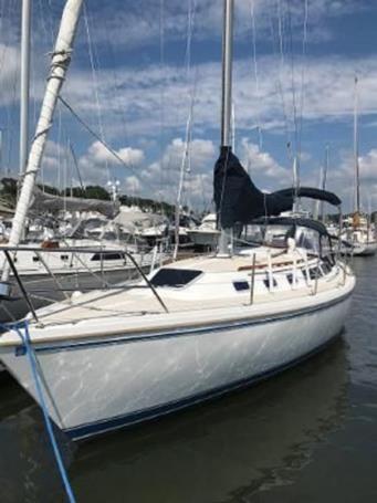 Купить яхту 1987 Catalina 34 в Atlantic Yacht and Ship