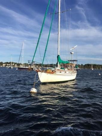 Продажа яхты GABRIELLE - TAYANA 37