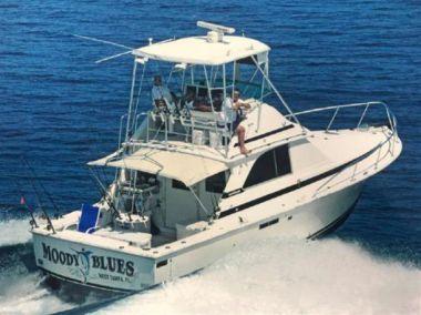 Лучшие предложения покупки яхты Moody Blues - BERTRAM