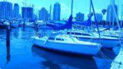 Продажа яхты 22 1981 Catalina Pop Top - CATALINA Pop Top