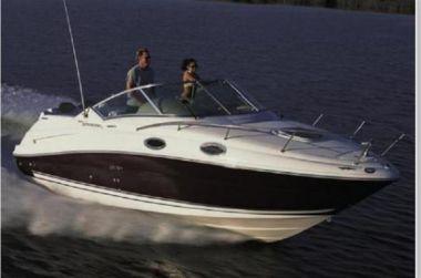 "2008 Sea Ray 240 Sundancer - SEA RAY 24' 0"""