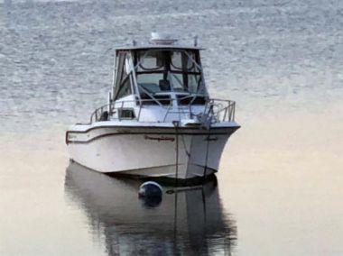 Стоимость яхты No Name - GRADY-WHITE 1996