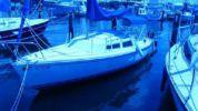 Лучшие предложения покупки яхты 22 1981 Catalina Pop Top - CATALINA