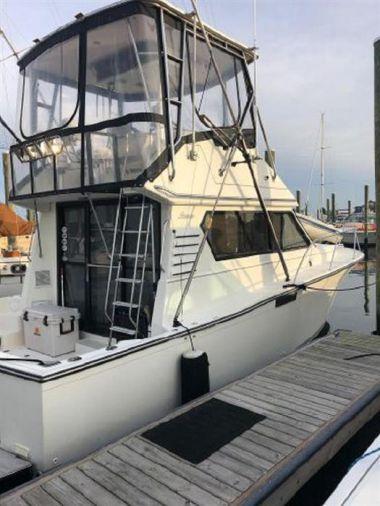Купить яхту Family Hug - PEARSON 34 Convertible в Shestakov Yacht Sales