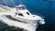 Buy a yacht TWO CRUISE - TIARA